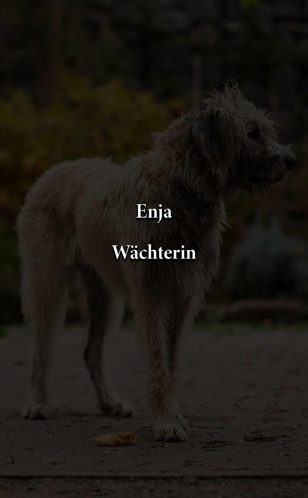 Enja_schwarz